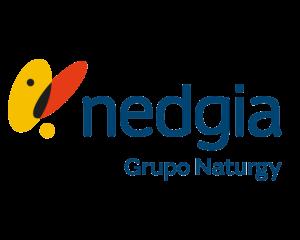 Nedgia Logo